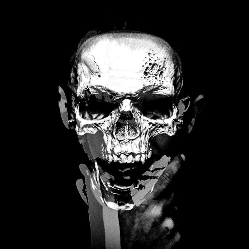 "Wildtek ""Skull"""